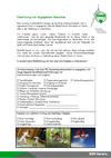 Formular_zur_Gewinnung_von_engagierten_MenschenDruck.pdf